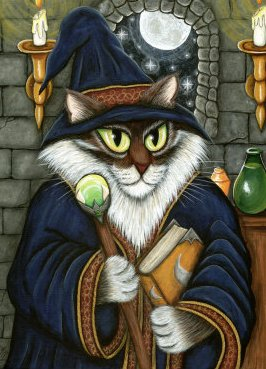 Merlin the magician as a cat poster c12325049