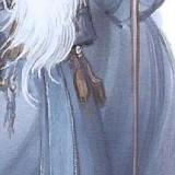 wizard98f020