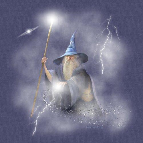 wizard_top_image_iif0839.jpg